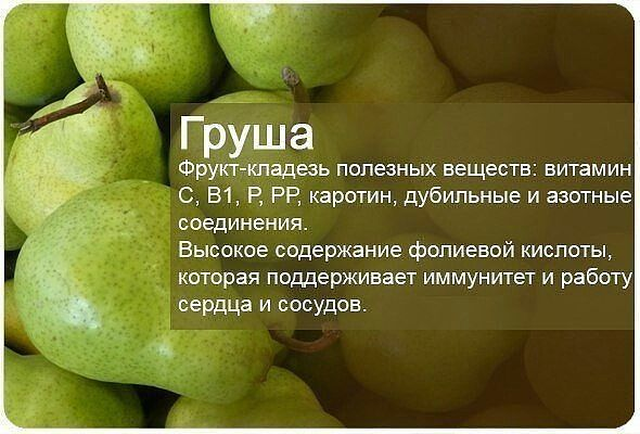 груша-