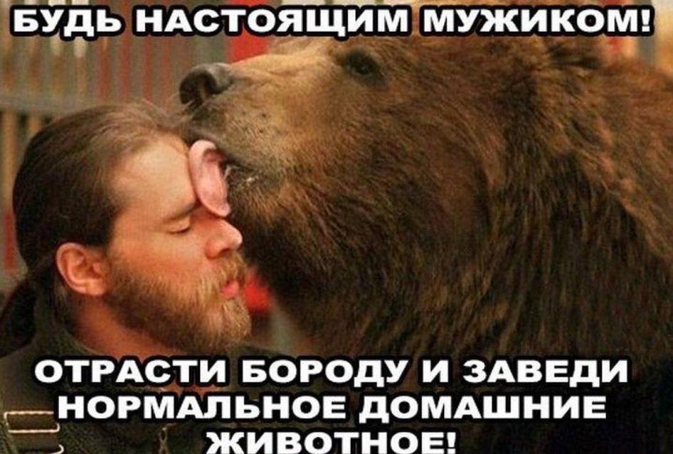 1-медведь-будь мужиком