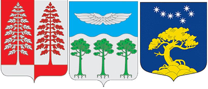 сосна--герб