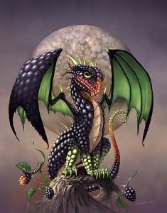 Ежевичный дракончик
