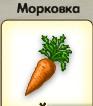 1-морковь-3-9