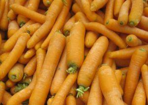 Морковь, фото Наты
