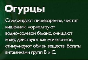 огурец-1-