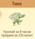 1-тмин- Территория Фермеров