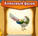 фазан алм-новые земли