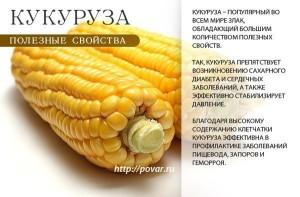 -кукуруза-3