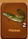 налим-рыбы-домовята