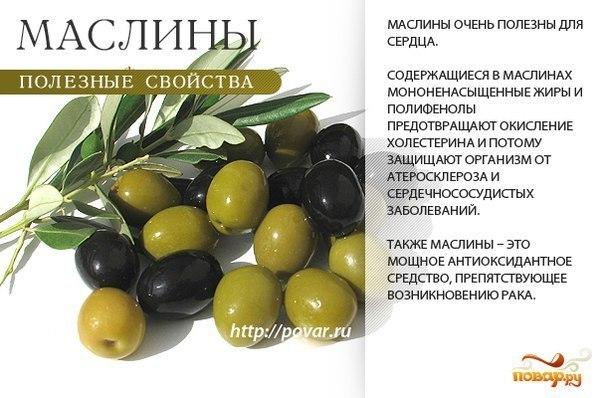 1-оливки-маслины