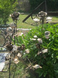Розы Атамани, фото Наты