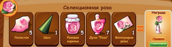 1-роза селекция-домовята