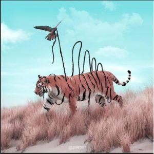 тигр-
