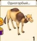 1-верблюд одн -новые земли