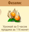 1-физалис- Территория Фермеров
