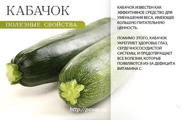 -кабачок-3
