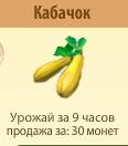 1-кабачок- Территория Фермеров