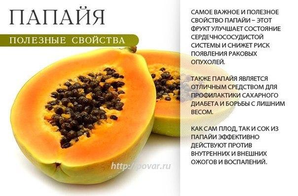 -папайя-3