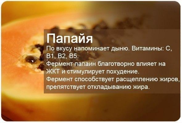 папайя-4