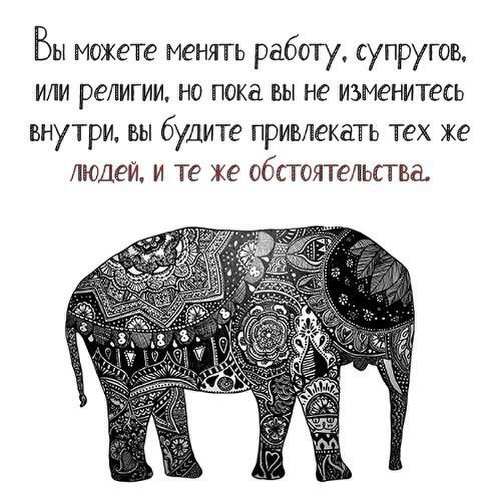 chelovek-vselennaya