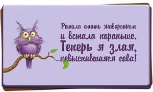 режим-e (25)