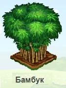 1-бамбук-Запорожье