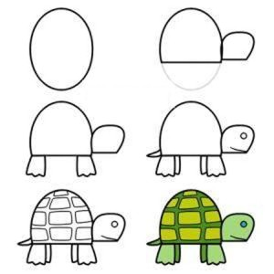 черепаха-3