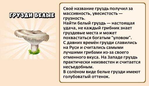 1-грузди-грибники и кланы