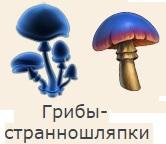 1-странношляпки-грибы-2 фанта-Клондайк