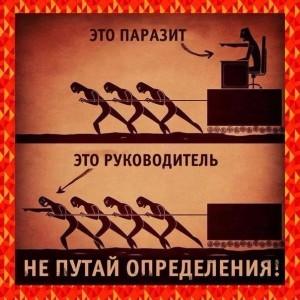 obshhestvo-
