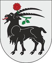 1-георгин-Юре-Литва