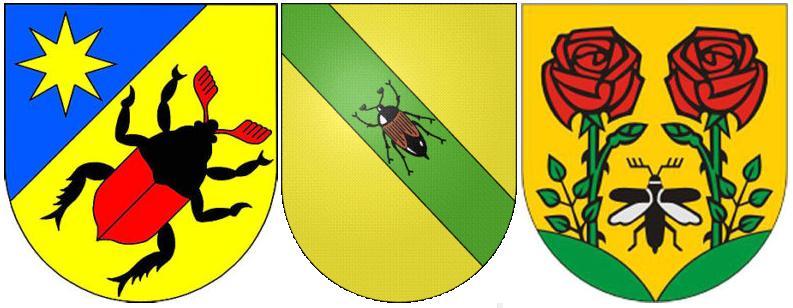 -майский жук на гербе-6