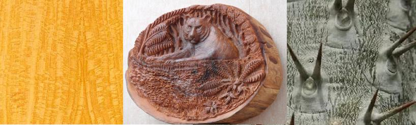 рутовые-древесина