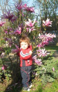 Тимурчик возле тюльпанного дерева
