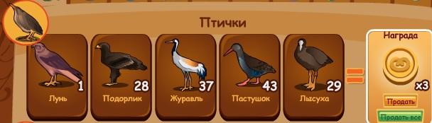 2-птицы-птички-домовята