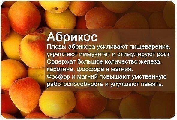 абрикос-