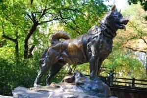 собака-памятник-Балто-Нью-Йорк