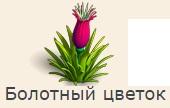 1-болоьный цветок-фанта-Клондайк