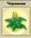 1-чаровник-3-9