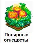 1-полярные огнецветы-Запорожье