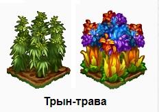 1-трын-трава-Запорожье