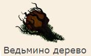 1-ведьмино дерево-фанта-Клондайк