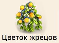 1-жрецов цветок-фанта-Верность