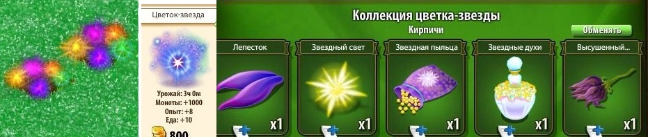-звезда-цветок-новые земли