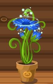 магии цветок-домовята