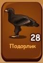1-подорлик-птички-домовята