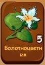 1-болотноцветник-морской садовод-домовята
