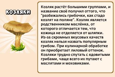1-козляки-грибники и кланы
